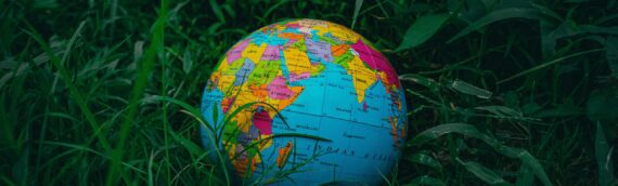 Choosing an Abroad Moving Service